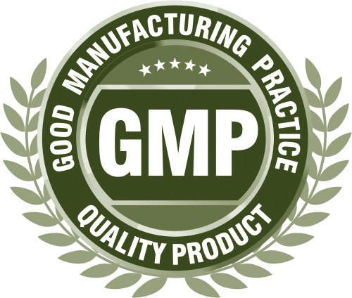 gmp certification in india